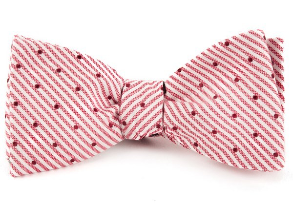 Down The Aisle Dots Red Bow Tie
