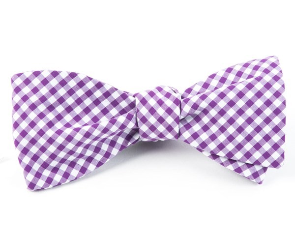 Novel Gingham Plum Bow Tie
