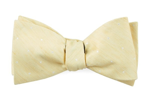 Bulletin Dot Butter Bow Tie