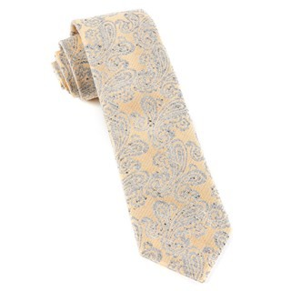Hanging Paisley Butter Tie