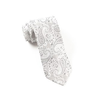 Waltzing Paisley Silver Tie