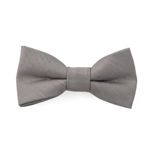 Bhldn Linen Row Silver Bow Tie