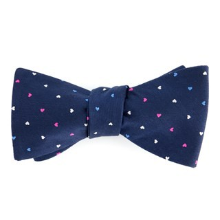 The True Ally Navy Bow Tie