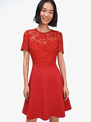 rose lace-bodice ponte dress